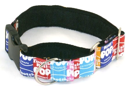 Buckle Martingale collar