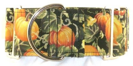 Harvest Pumpkins dog collar