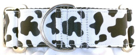 Cow Print dog collar