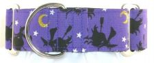 Flying Witches dog collar