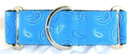 Paisley Carolina Blue dog collar PRESEWN AND READY TO SHIP