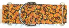 Pumpkin Minis dog collar